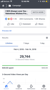 Results screenshot showing video views for a Facebook video ad.