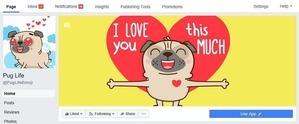 Screenshot of Pug Life's Facebook header, part of the marketing run by Daniel Larsen