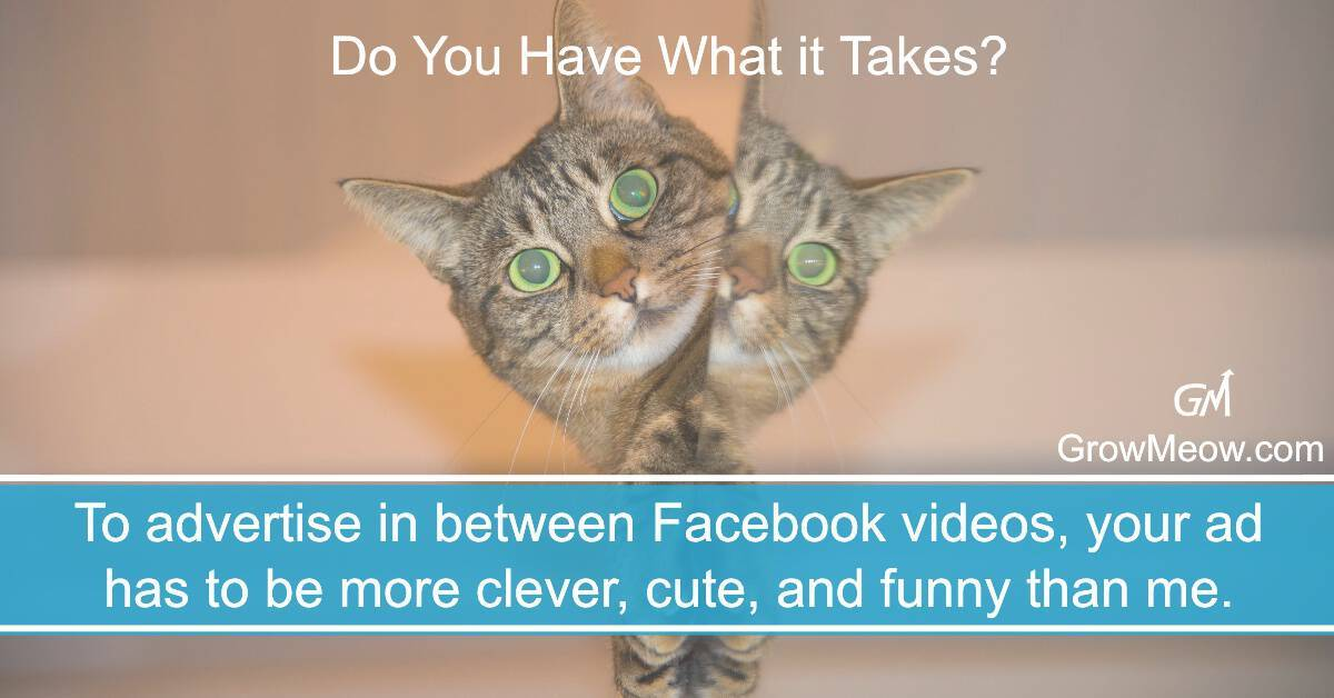 Facebook ads viral video